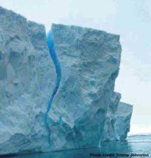 Antartika Menghangat 0405 p7antartica 2