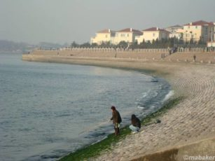 Kenaikan Muka Laut 10 Milimeter per Tahun sea shore 2