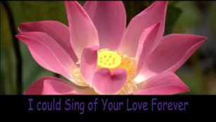 I Could Sing of Your Love Forever - Hillsong Kids mnPVJYTW9s8 3
