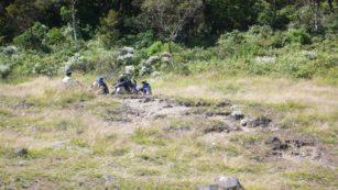 Lessons Learned dari Pendakian Gunung Gede p1060917 3