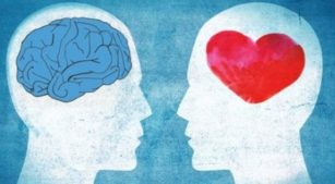 Characteristics of Highly Emotionally Intelligent People main qimg 51395329c0b24b6735a7cb3b28afbf82 c 3