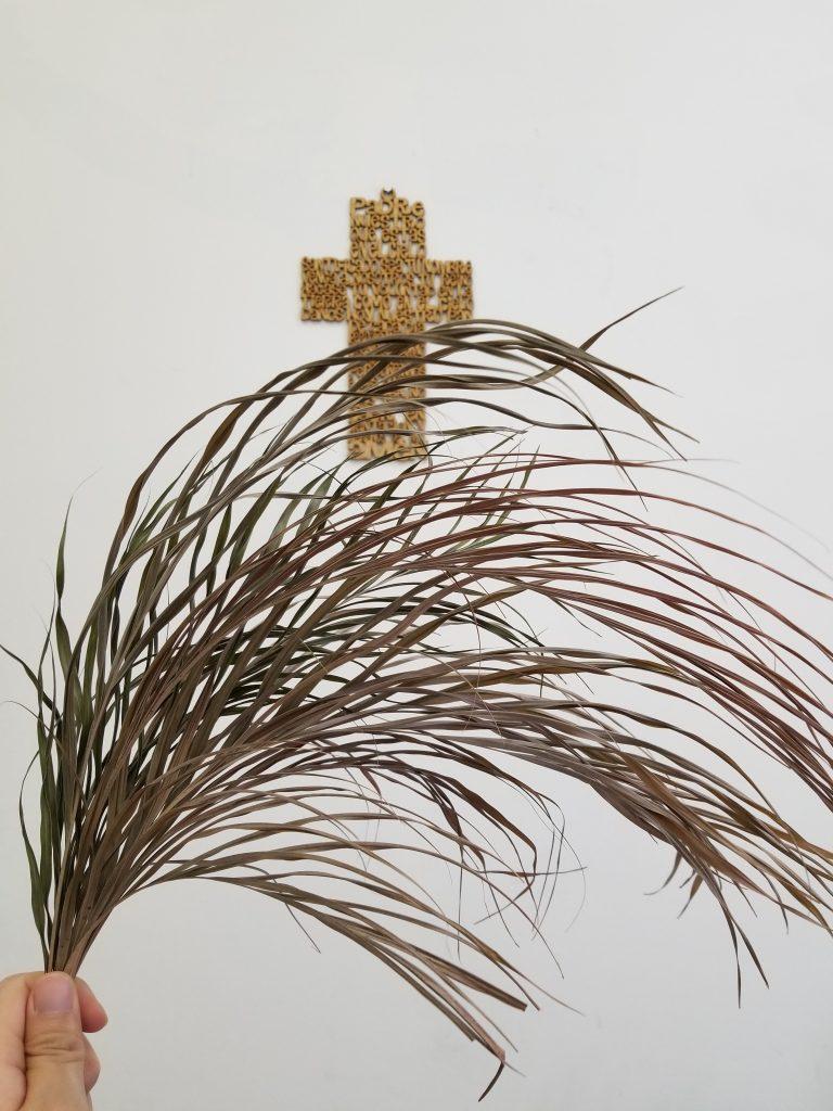 Daun Palma Keringku Salib