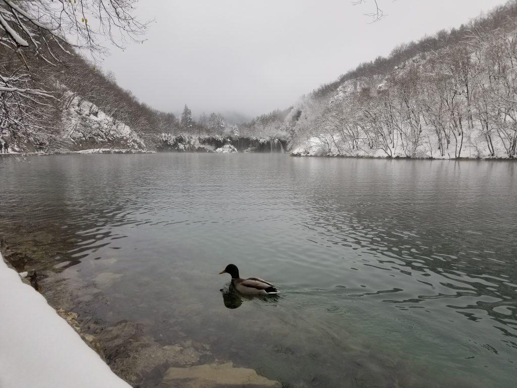 Salju di Plitvice Lake, Kroasia Plitvice Lake Winter Snow Croatia 7 6