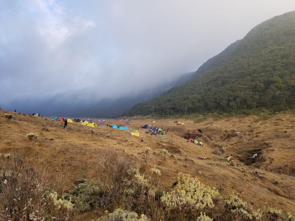 Pendakian Gunung Gede: Putri Lintas Cibodas - Menuju Surya Kencana (2/3) Camp Spot Surya Kencana Gunung Gede 12