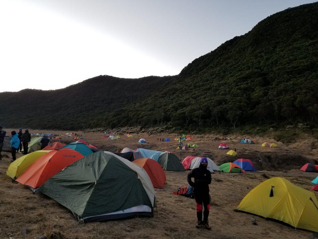 Pendakian Gunung Gede: Putri Lintas Cibodas - Menuju Surya Kencana (2/3) Pagi di Surya Kencana Gunung Gede 18