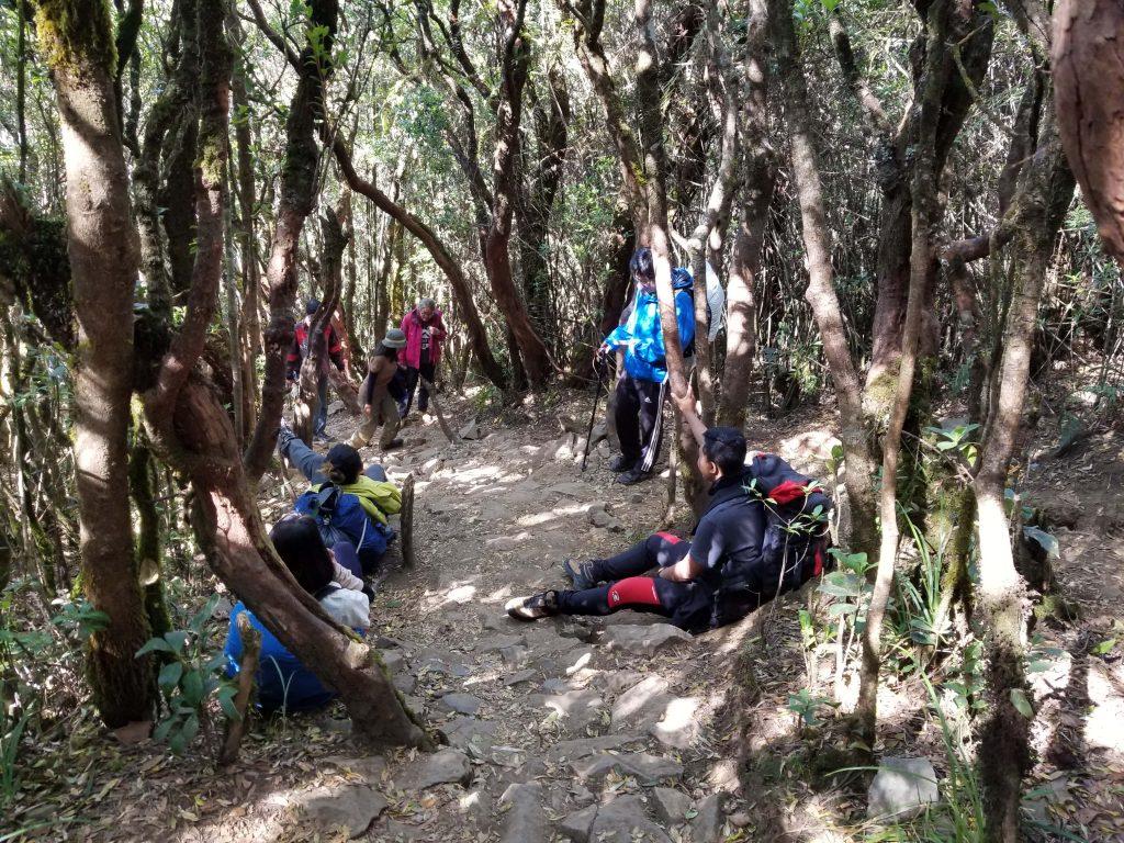Perjalanan Ke Puncak Gunung Gede