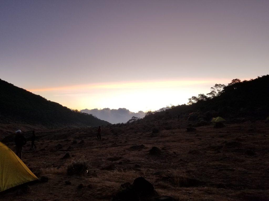 Pendakian Gunung Gede: Putri Lintas Cibodas - Menuju Surya Kencana (2/3) Senja di Surya Kencana Gunung Gede 13