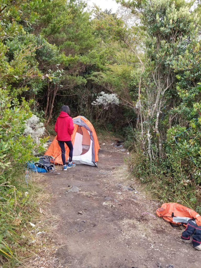 Pendakian Gunung Gede: Putri Lintas Cibodas - Menuju Surya Kencana (2/3) Spot Tenda Pertama Yang Batal Surya Kencana Gunung Gede 14