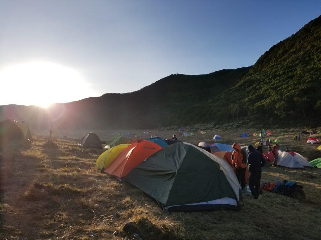 Pendakian Gunung Gede: Putri Lintas Cibodas - Menuju Surya Kencana (2/3) Sunrise di Surya Kencana Gunung Gede 19