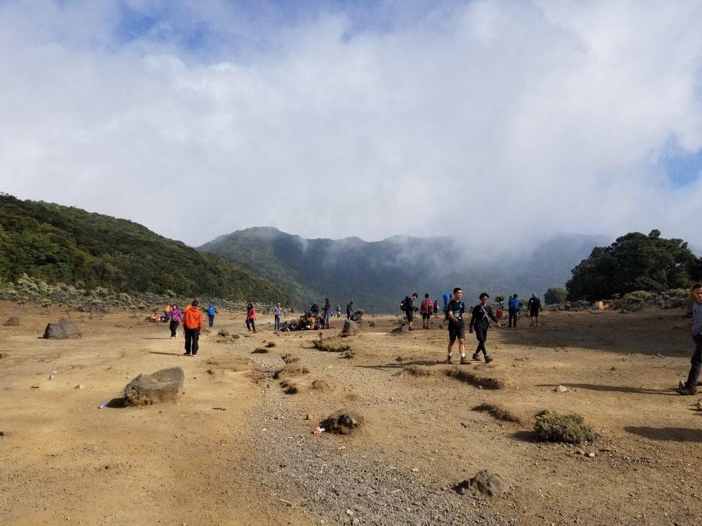 Pendakian Gunung Gede: Putri Lintas Cibodas - Menuju Surya Kencana (2/3) Surya Kencana Gunung Gede Ramai Pendaki 8