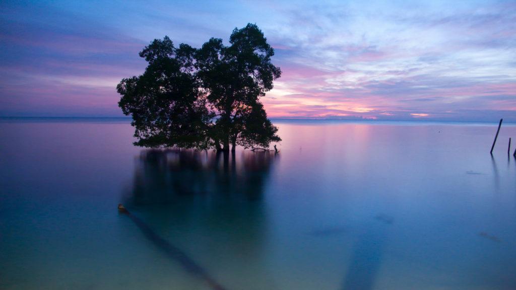Sunrise di Biduk-Biduk, Berau, Kalimantan Timur - Oleh Herwin.
