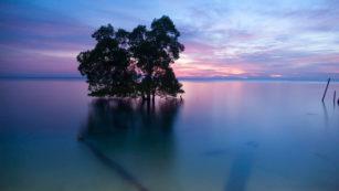 Foto Favorit Tetang Indahnya Alam Indonesia Biduk Biduk 17 Agustus 2016 1