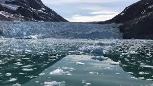 Es Dunia Meleleh Lebih Cepat Es Mencair Antartika 6