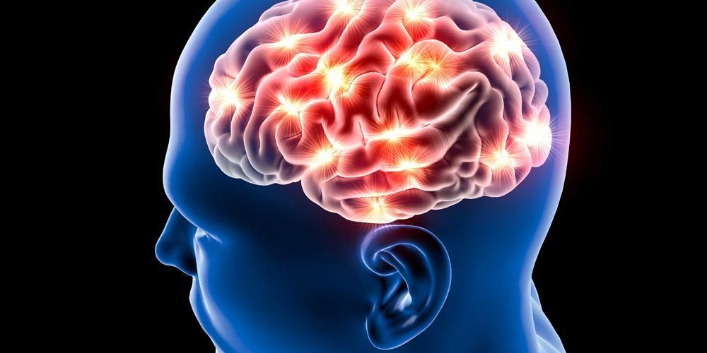 Misteri Otak Kita Misteri Otak Manusia 1